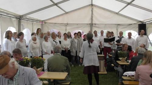 2017_BWV-Sommerfest_S1010015